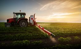 Pesticides de pulvérisation de tracteur au champ de haricot de soja photos stock