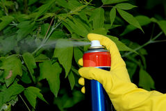 Pesticiding garden Stock Photography