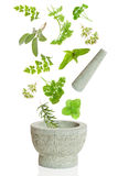 Pestle & Mortar. Pestle and herbs falling into mortar on white background Stock Images