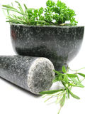 Pestle and mortar. Close-up picture of a pestle and mortar and some herbs Stock Photography