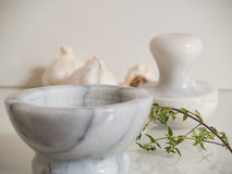 Pestle and Mortar with garlic and thyme Royalty Free Stock Images