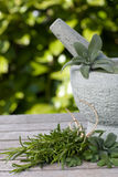 Pestle and mortar and herbs. Pestle and mortar and various herbs Royalty Free Stock Image