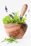 Pestle & Mortar With Herbs. Pestle & mortar filled with lavender, mint, and rosemary herbs Stock Image