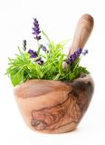 Pestle & Mortar Herbs Stock Photos