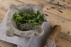 Pestle, mortar and herbs Royalty Free Stock Image