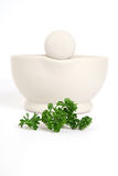 Pestle & Mortar with Parsley Royalty Free Stock Photo