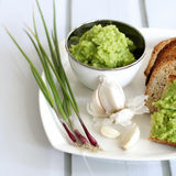 Pesto σκόρδου Στοκ εικόνα με δικαίωμα ελεύθερης χρήσης