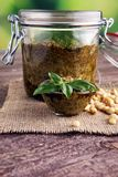 Pesto генуэзский - традиционный итальянский зеленый соус базилика с сосной Стоковое Изображение