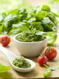 Pesto stockbild