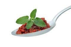 Pesto-Bruschetta Stock Image