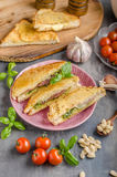 Pesto cheese sandwich Stock Image