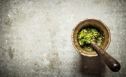 Pesto dans un mortier avec le pilon Photographie stock libre de droits