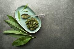 Pesto del ajo salvaje imagen de archivo