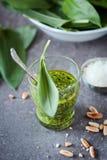 Pesto dell'aglio selvaggio Fotografia Stock
