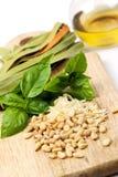 Pesto ingredienser Arkivbilder