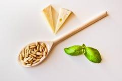 Pesto ingredienser Arkivfoto