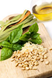 Pesto Ingredients Stock Images
