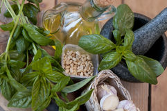 Pesto ingredients Royalty Free Stock Photography