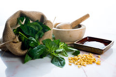 Pesto ingredients Stock Photography