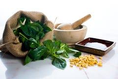 Pesto ingredients. Ingredients for making basil pesto.  Italian cooking Stock Photography