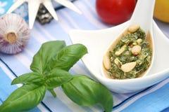 Pesto italiano fresco Fotografia Stock