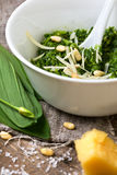 Pesto ramson. In a white bowl, fresh wild garlic, pine nuts, parmesan and olive oil on a wooden background Stock Photos