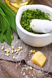 Pesto ramson. In a white mortar, fresh wild garlic, pine nuts, parmesan and olive oil on a wooden background Stock Photography