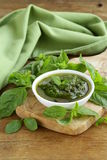 Pesto sauce with basil and olive oil Royalty Free Stock Image