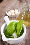 Pesto sauce ingredients. On wooden table Stock Photos