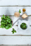 Pesto Sauce Ingredients Stock Image