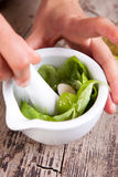Pesto sauce preparation. Preparing pesto sauce with mortar and pestle Royalty Free Stock Image