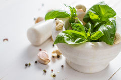 Pesto sause and ingredients on white background Royalty Free Stock Images