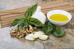 Pesto Secrets Royalty Free Stock Image