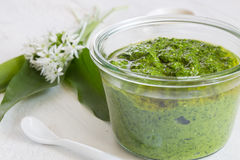 Pesto with wild garlic in a jar Stock Image