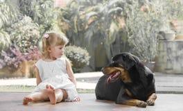 With pet Royalty Free Stock Photos