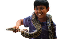 Pet. Boy holding his pet snake stock photo