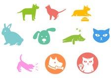 pet Imagen de archivo libre de regalías