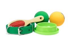 Pet accessories concept. Bowls, Rubber toy, Collars on isolated white