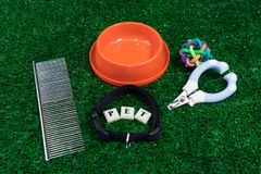 Pet accessories concept on grass background. Bowl, toys, comb, collars, nail scissors on green grass stock image