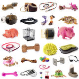 Pet accessories Stock Image