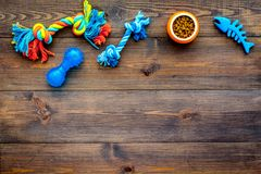 Pet accessories. Toys for cat and dog near bowl with animal feed on dark wooden background top view copy space. Pet accessories. Toys for cat and dog near bowl Royalty Free Stock Photo