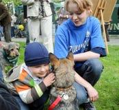 Pet adoption Stock Photography