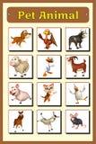 Pet animal chart Royalty Free Stock Photo