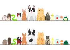 Pet animals border set. Front view and rear view Stock Images