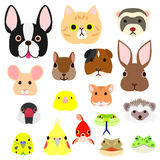Pet animals faces colorful set. Cute pet animals faces colorfulset Royalty Free Stock Image