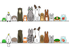 Pet animals in line, front and back Royalty Free Stock Images