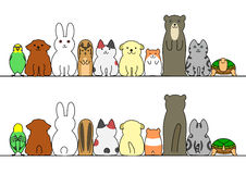 Pet animals in a row with copy space,front and back.  Royalty Free Stock Photo