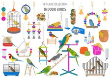 Pet appliance icon set flat style isolated on white. Birds care collection. Create own infographic about parrot, parakeet, canary royalty free stock photos