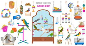 Pet appliance icon set flat style isolated on white. Birds care collection. Create own infographic about parrot, parakeet, canary stock photos