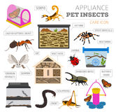 Pet appliance icon set flat style isolated on white. Insects car royalty free illustration